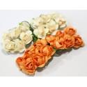 Diadema de flores, combinadas